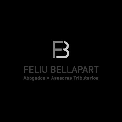 Feliu Bellapart - Cliente de Amplia Estudio