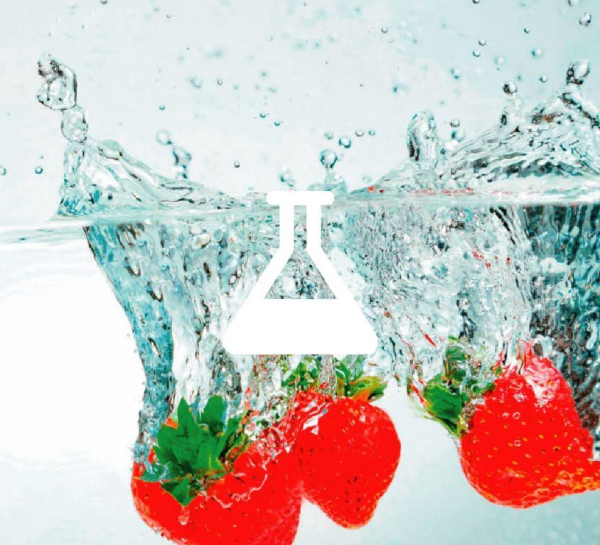 Diseño Web Asesoría Higiénico Sanitaria Biovet Balear