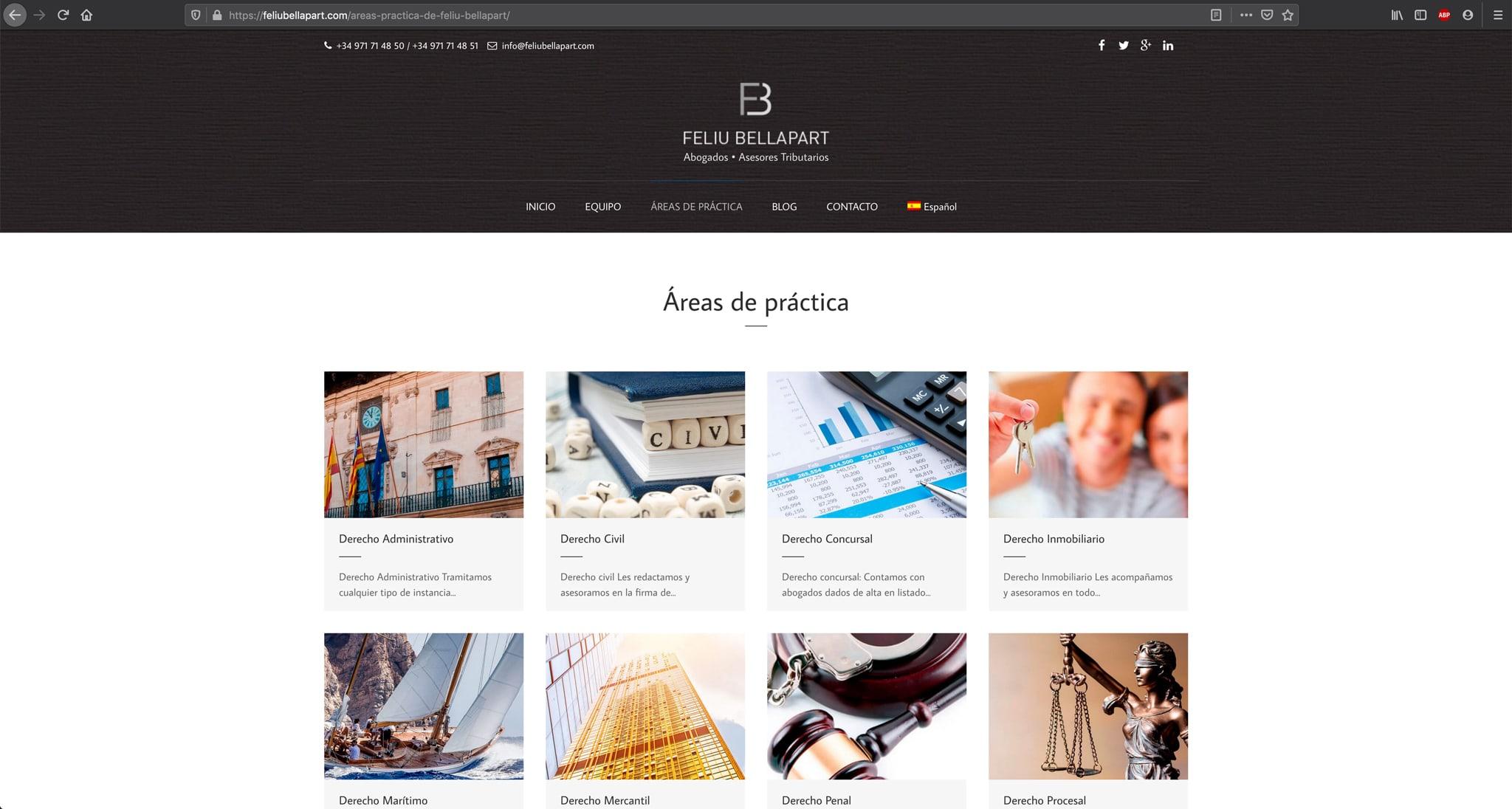 Website- Feliu Bellapart - Áreas de práctica